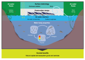 Integrating environmental understanding into freshwater floatovoltaic deployment using an effects hierarchy and decision trees